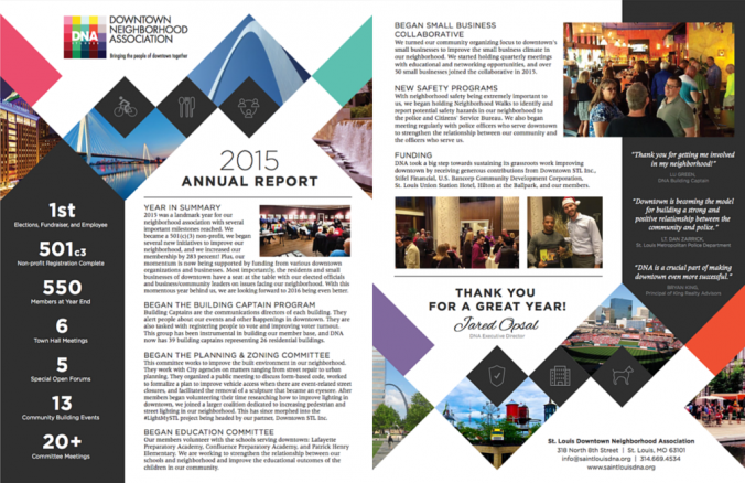2015 Annual Report Screenshot